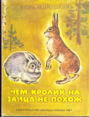 Чем кролик на зайца не похож