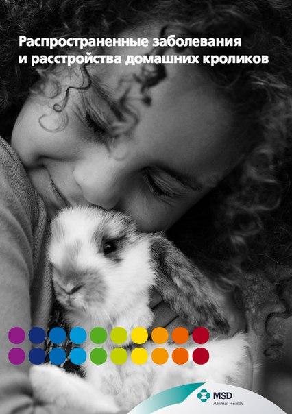 Распространенные заболевания и расстройства домашних кроликов