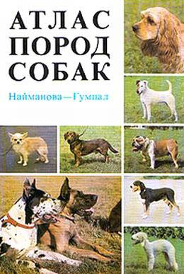 Найманова Диана - Атлас пород собак