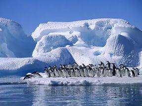Ледяной континент