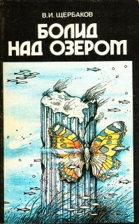 Владимир Щербаков — Болид над озером