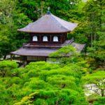 Видео уроки японского языка