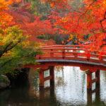 Аудиокурс японского языка