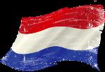 Полиглот нидерландский язык за 16 часов. Смотреть и слушать онлайн.