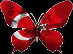 Полиглот турецкий язык за 16 часов. Смотреть и слушать онлайн.