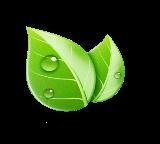 Видео уроки по экологии